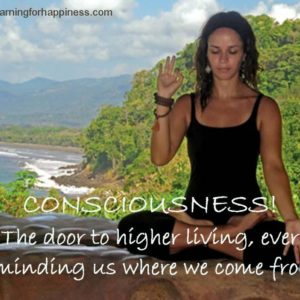Life as a conscious being